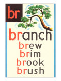 BR for Branch