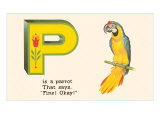 P is a Parrot