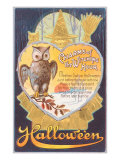 Halloween  Owl and Poem