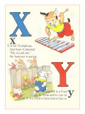 X is for Xylophone  Y is for Yard