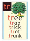 TR for Tree