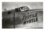 Nose Art  Fertile Myrtle