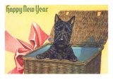 Happy New Year  Scotty Dog