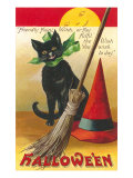 Halloween  Cat and Broom