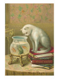 A Happy New Year  Cat Watching Frog and Fish in Bowl