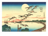 Japanese Illustration  Flying Geese