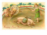 Happy New Year  Performing Pigs