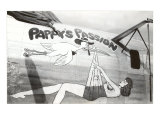 Nose Art  Pappy's Passion Pin-Up with Stork