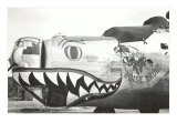 Nose Art  Boise Bronc