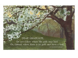 Advice for the Graduate  Cherry Blossoms