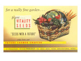 Vitality Seeds Advertisement  Vegetable Basket