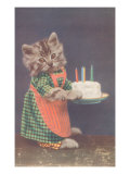 Dressed Kitten with Birthday Cake