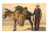 Vegetable Seller with Donkey  Italy