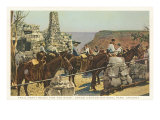 Mules at Lookout  Grand Canyon