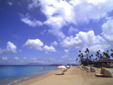 Beach Chairs and Palms  Pinneys Beach  Nevis  Caribbean
