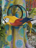 Colorful Art Gallery Details  Pine Island  Florida  USA