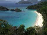 Trunk Bay Beach  St Johns  US Virgin Islands