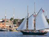 Gloucester Schooner Festival  Gloucester  Cape Anne  Massachusetts  USA