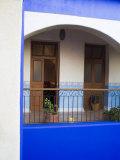 Hotel Mediomundo  Merida  Yucatan  Mexico