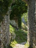 Ancient Archway  Stari  Bar  Montenegro