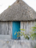 Houses in Coastal Fishing Village  San Felipe  Yucatan  Mexico