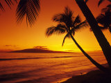 Colorful Sunset in a Tropical Paradise  Maui Hawaii  USA