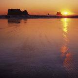 Seastacks at sunset  Olympic National Park  Washington  USA