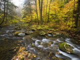 Sanderson Brook  Chester-Blanford State Forest  Chester  Massachusetts  USA