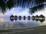 Over Water Bungalows  Rangiroa  French Polynesia