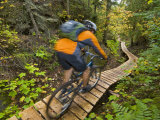 Mountain biking on the Stairway to Heaven Trail  Copper Harbor  Michigan  USA