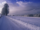 Morning snow on road  Kitzbuhel  Tirol  Austria