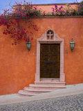 Bougainvillea Blooming  San Miguel  Guanajuato State  Mexico