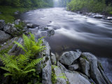 West Branch of the Westfield River  Chesterfield  Massachusetts  USA