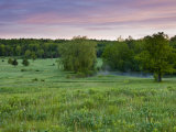 Early morning in a field at Highland Farm in York  Maine  USA