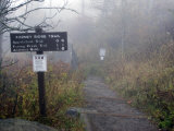 Appalachian Trail near Clingman&#39;s Dome  Great Smoky Mountains  Tennessee  USA