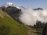 Mount Rainier rises above a fog bank  Tatoosh Wilderness  Washington State  USA