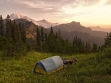 Blue backpacking tent in the Tatoosh Wilderness  Washington State  USA