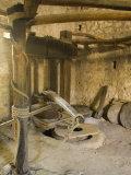Old machinery to make olive oil at Arboretum    Trsteno    Dalmatia  Croatia