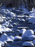 Snow covered boulders along the Hughes River  Shenandoah National Park  Virginia  USA