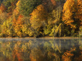 Fall color along the New River  Appalachian Mountains  Jefferson National Forest  Virginia  USA