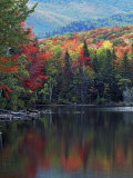 Shoreline of Heart Lake  Adirondack Park and Preserve  New York  USA