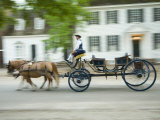 Horse-Drawn Carriage  Williamsburg  Virginia  USA