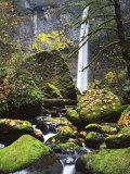 Elowah Falls  John B Yeon State Park  Columbia River Gorge  Oregon  USA