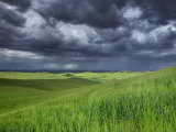 Storm Clouds over Agricultural Wheat Field  Tuscany  Italy