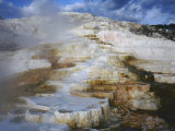 Terrace of Minerva Springs  Mammoth Hot Springs  Yellowstone National Park  Wyoming  USA