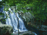 Dark Hollow Falls  Shenandoah National Park  Virginia  USA