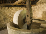 Old machinery to make olive oil at Arboretum    Trsteno    Dalmatia  Croatia