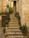 Steps with plants outside historic stone house  Trogir  Dalamatia  Croatia