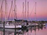Sailboats at Dusk  Chesapeake Bay  Virginia  USA
