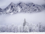 Cascade Range  Mt Si after snowfall  King County  Washington  USA